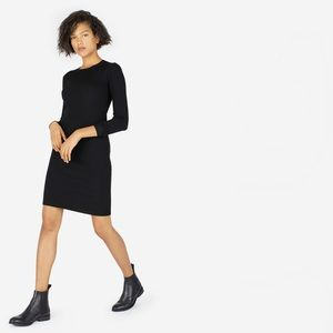 Everlane Luxe Wool Ribbed Dress